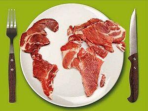 Futtermittel global Ausstellung
